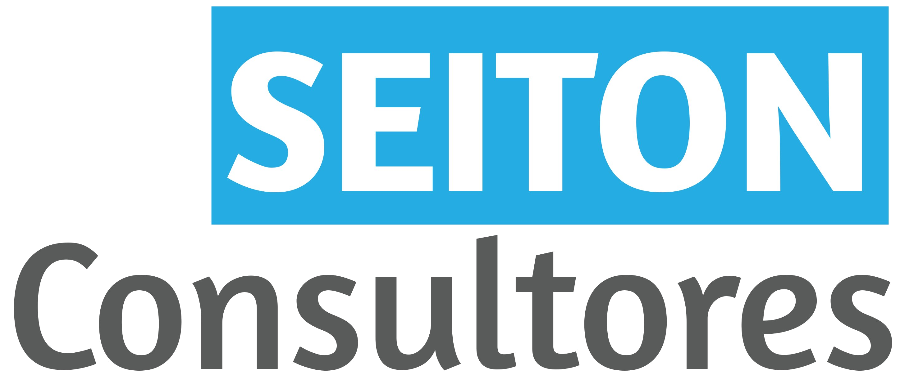 Seiton Consultores SRL